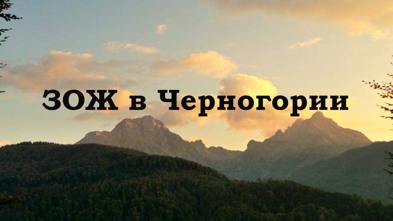 Зож в Черногории