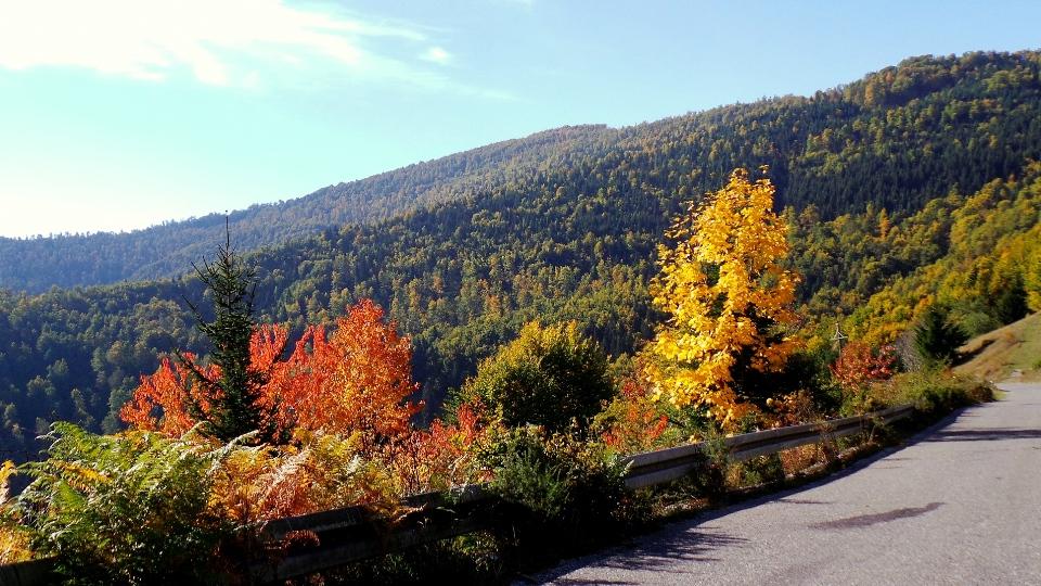 природа Черногории в октябре
